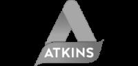 logo_0001s_0009_atkins